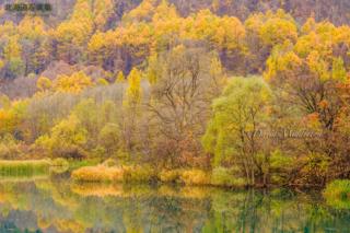 今月の壁紙: 川に映る秋