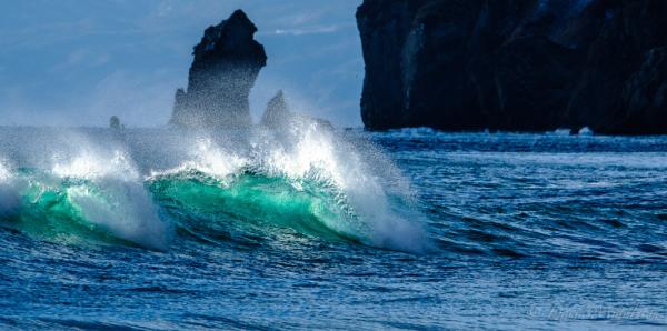 緑色に助ける波の写真